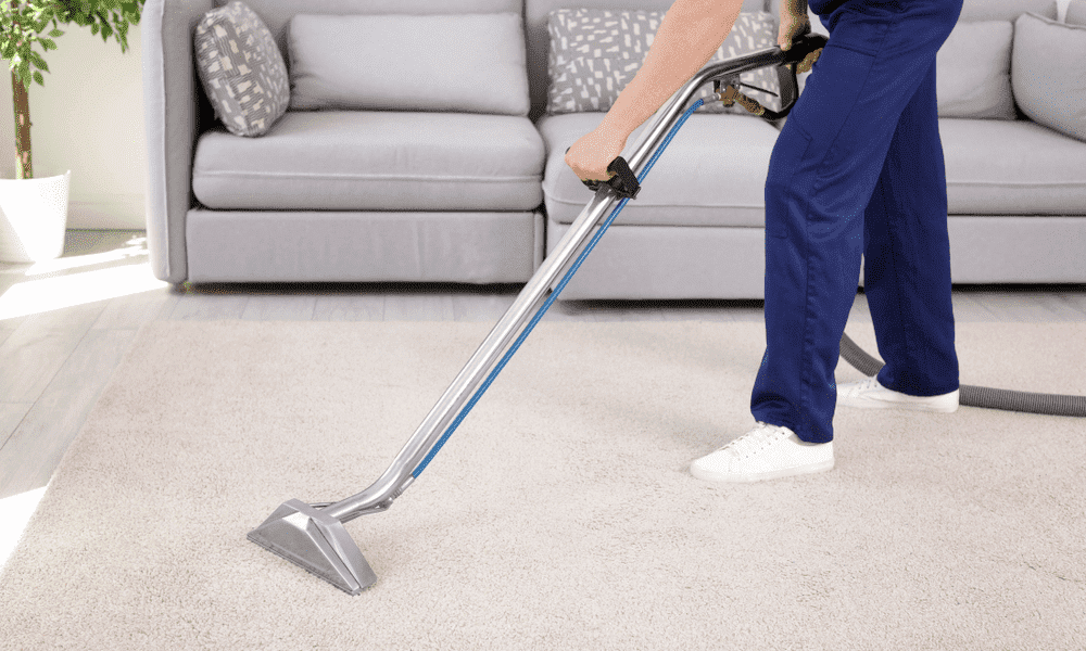 Tips To Keep Your Carpet Clean And Healthy – revistaavances